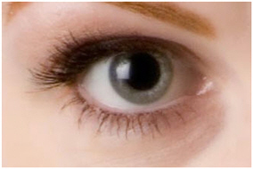 Dilated Pupils Body Language